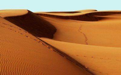 Rien de pire qu'un site désert ?